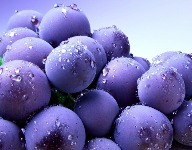 Blueberry-fruit-34733353-1020-800