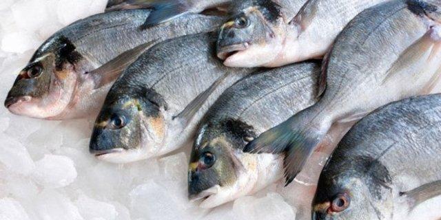 o-FRESH-FISH-facebook